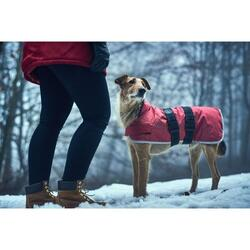 Dog coat Denali Reflect